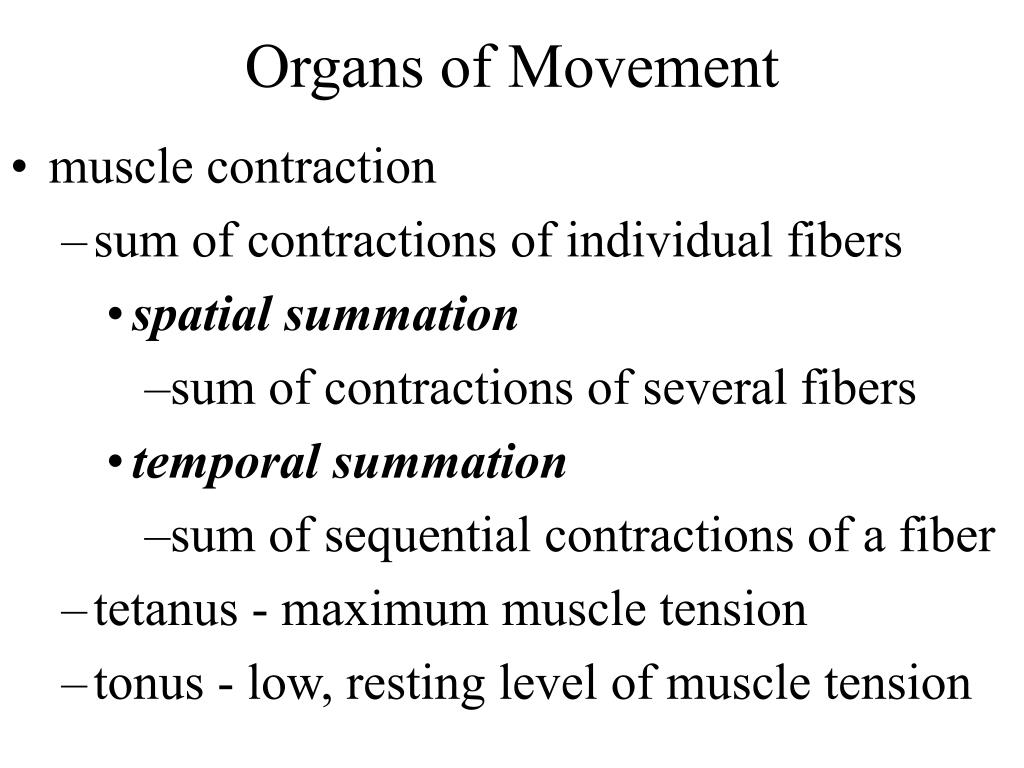 temporal summation and muscle tension
