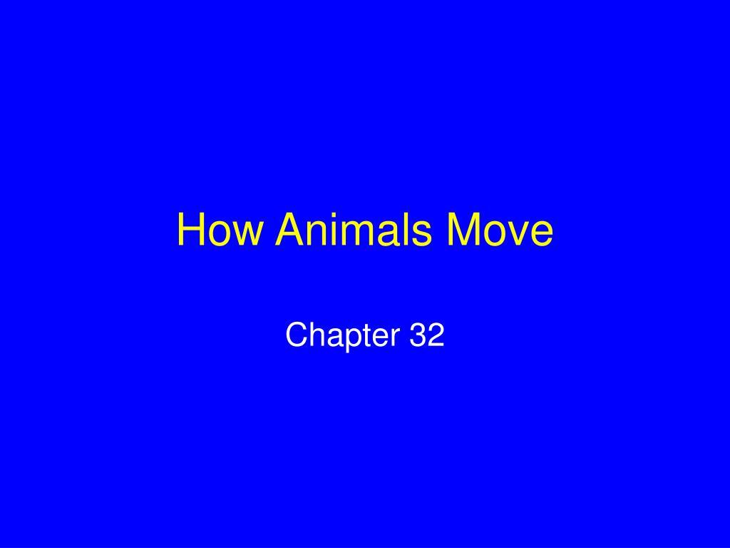 how animals move l.