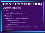 bone composition