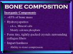 bone composition36