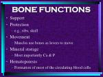 bone functions