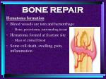 bone repair56
