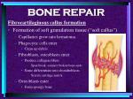 bone repair57