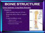 bone structure16