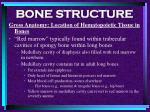 bone structure24