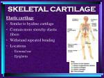 skeletal cartilage5