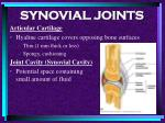 synovial joints72