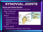 synovial joints76