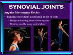 synovial joints81