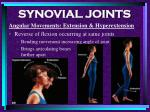 synovial joints82