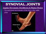 synovial joints83