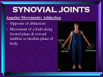 synovial joints85