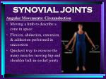 synovial joints86