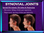 synovial joints91