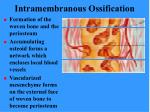 intramembranous ossification71