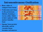 intramembranous ossification72