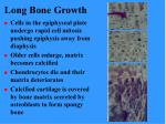 long bone growth