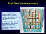 basic bone histomorphometry