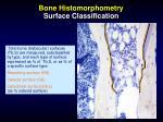 bone histomorphometry surface classification