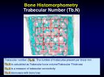 bone histomorphometry trabecular number tb n