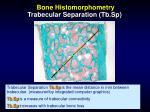 bone histomorphometry trabecular separation tb sp