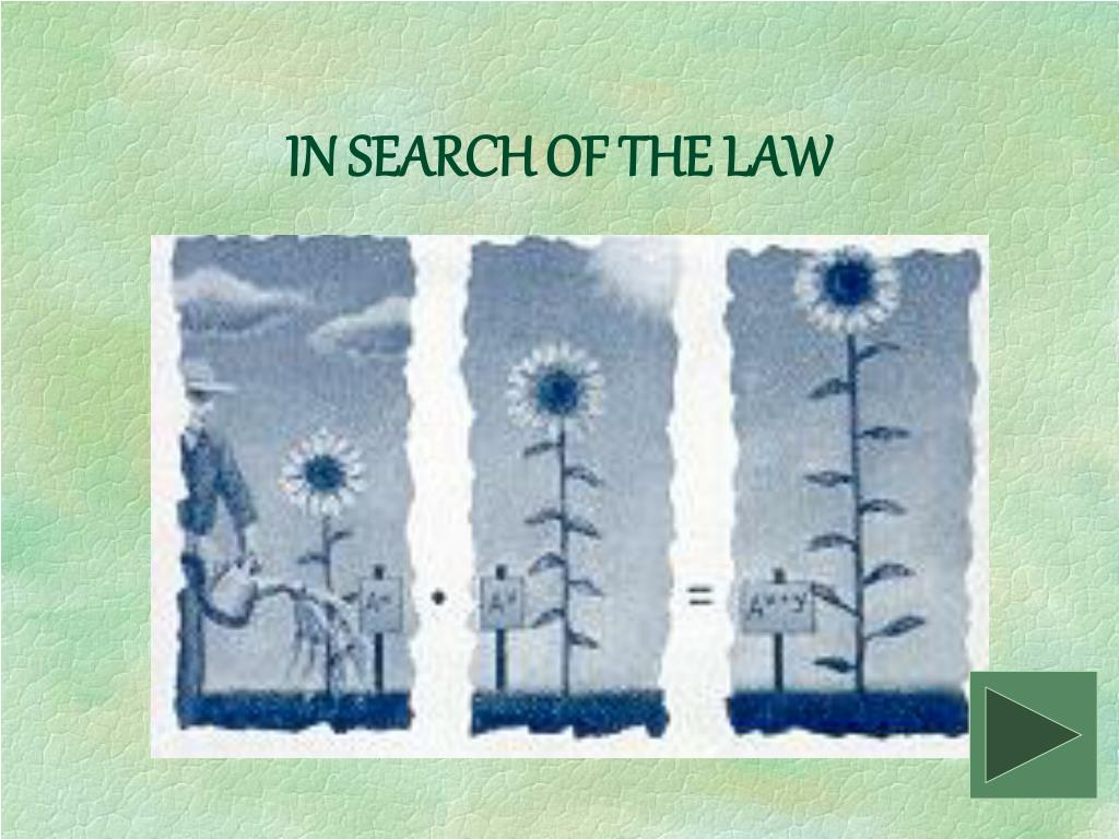 IN SEARCH OF THE LAW