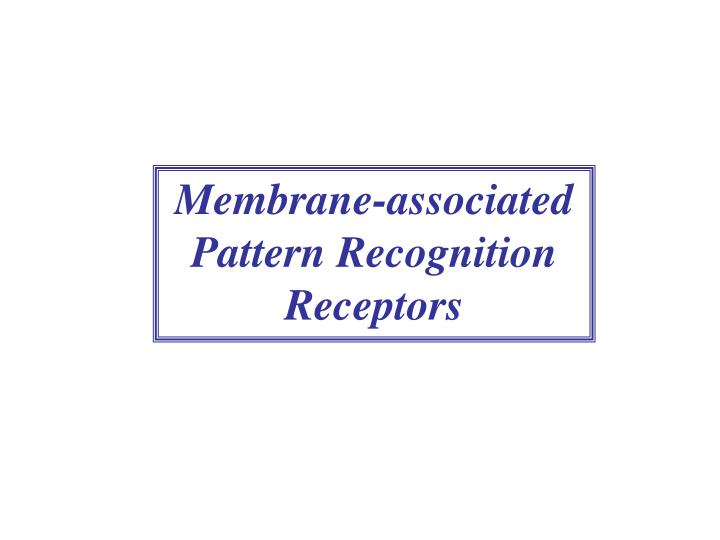 Membrane-associated Pattern Recognition Receptors