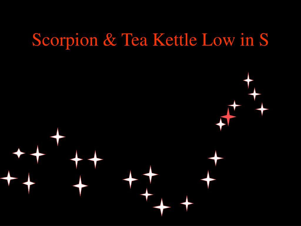 Scorpion & Tea Kettle Low in S