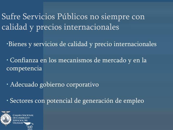 Sufre Servicios Públicos no siempre con calidad y precios internacionales