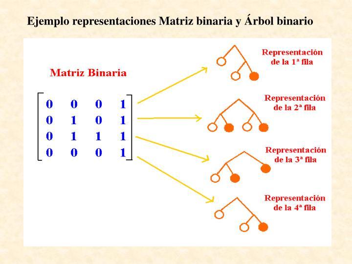Ejemplo representaciones Matriz binaria y Árbol binario