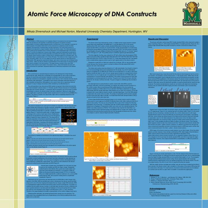 Atomic force microscopy of dna constructs