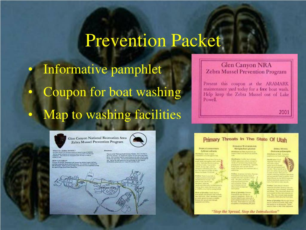 Prevention Packet