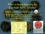 what is being done for the colorado river system