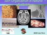 self organization in natural systems