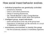 how social insect behavior evolves