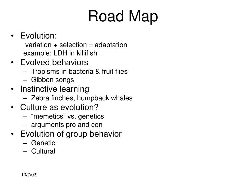 road map l.