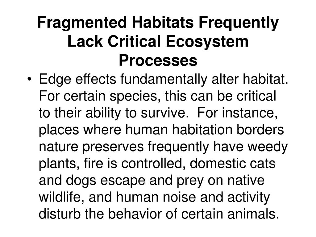 Fragmented Habitats Frequently Lack Critical Ecosystem Processes