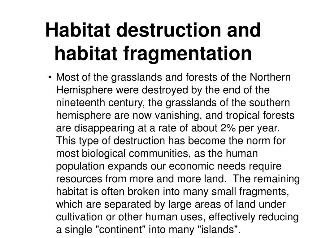 Habitat destruction and habitat fragmentation