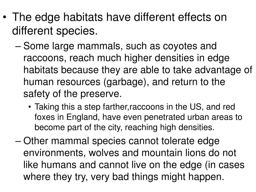 The edge habitats have different effects on different species.