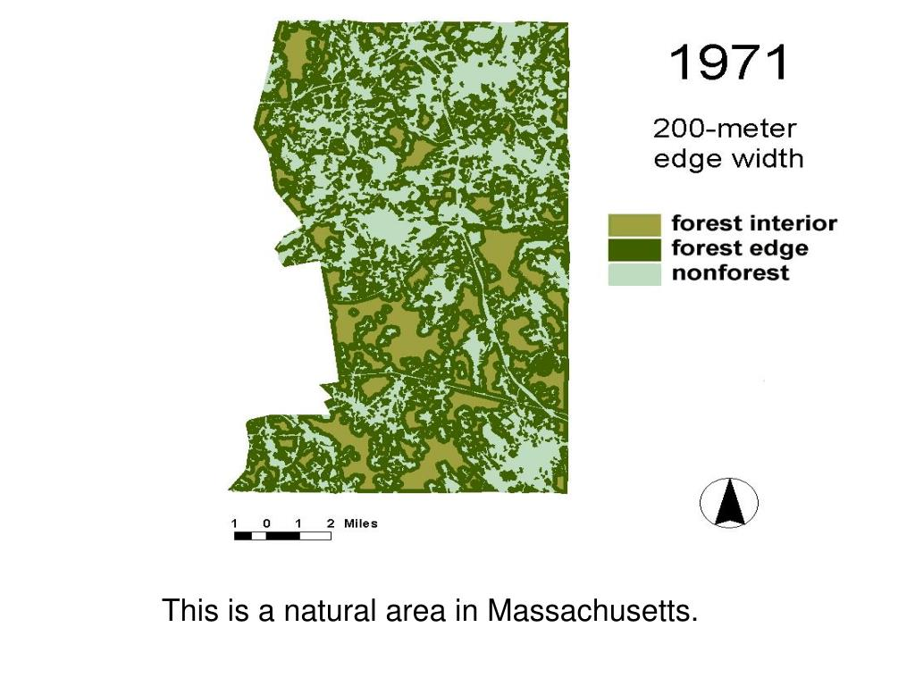 This is a natural area in Massachusetts.