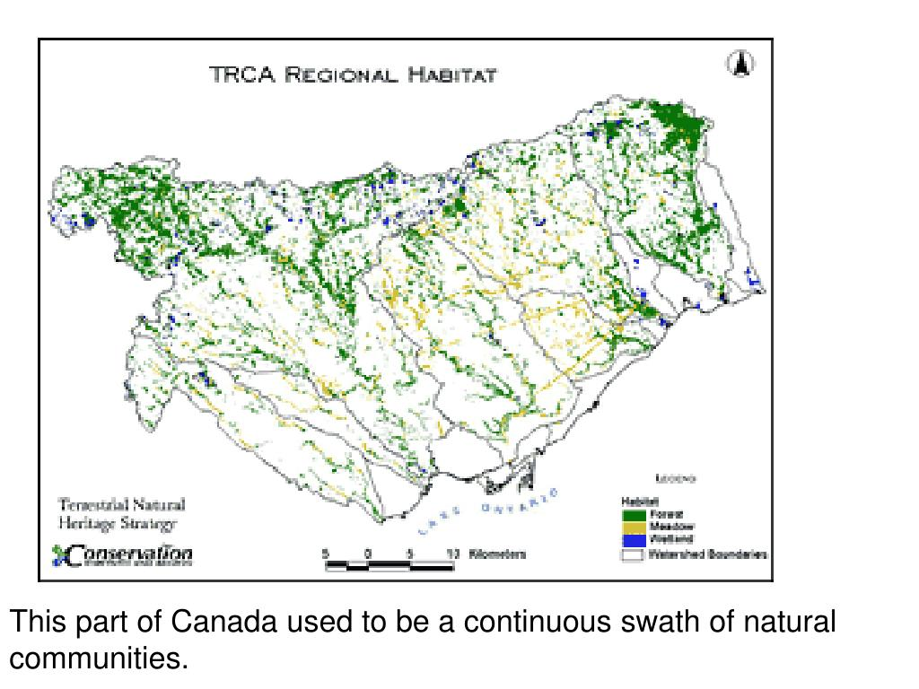 This part of Canada used to be a continuous swath of natural communities.