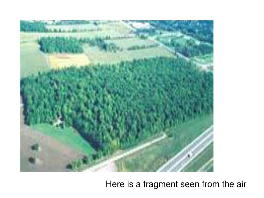 Here is a fragment seen from the air