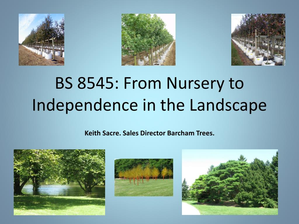 bs 8545 from nursery to independence in the landscape l.