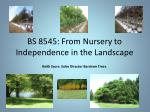 bs 8545 from nursery to independence in the landscape