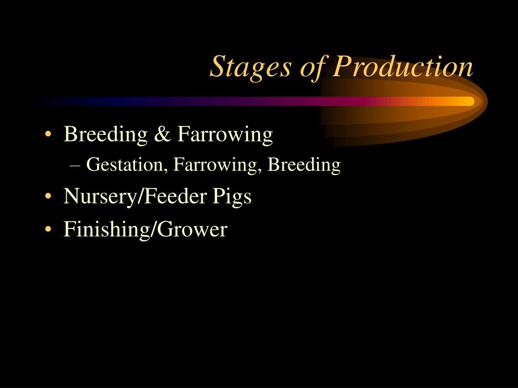 stages of production l.
