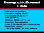 demographic economic data