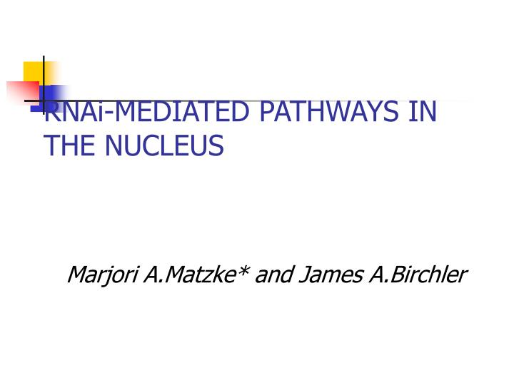 Rnai mediated pathways in the nucleus
