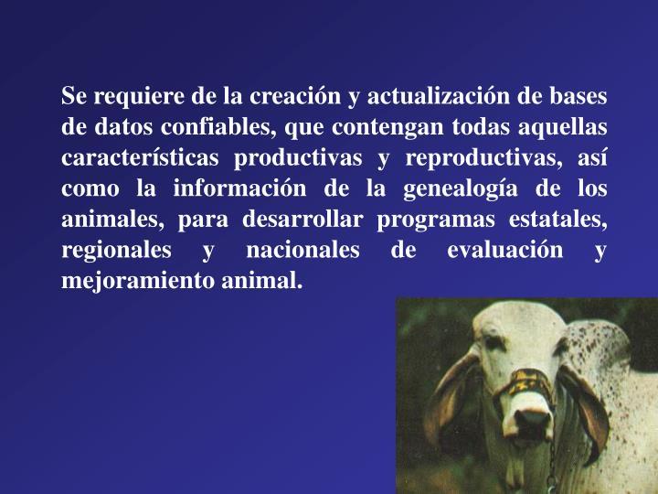 Se requiere de la creación y actualización de bases de datos confiables, que contengan todas aquellas características productivas y reproductivas, así como la información de la genealogía de los animales, para desarrollar programas estatales, regionales y nacionales de evaluación y mejoramiento animal.