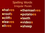 spelling words irregular plurals57