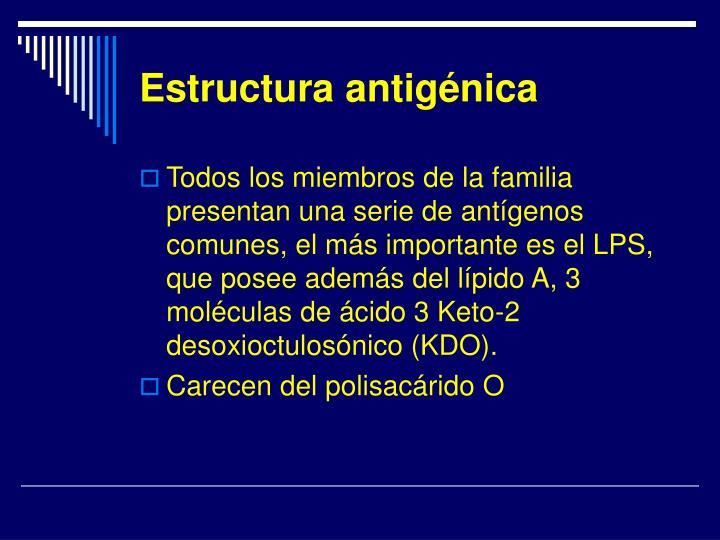 Estructura antigénica
